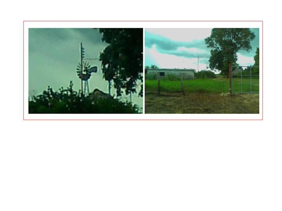 Slide1_2011-11-30.JPG